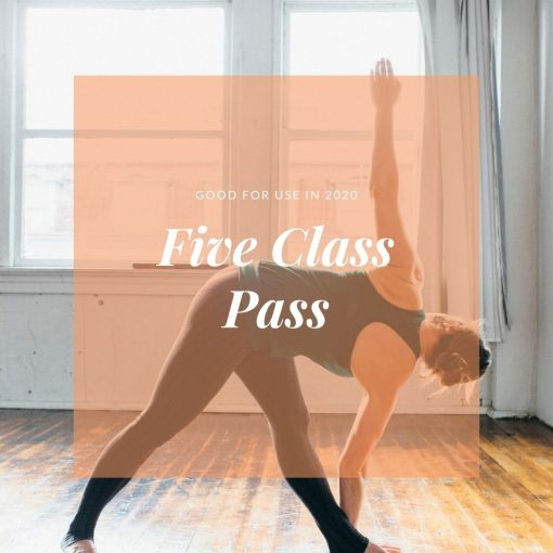 five class pass with rachel drummond