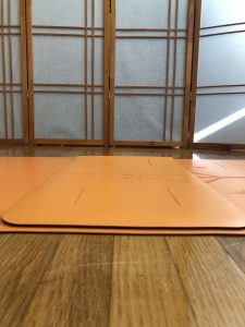 orange Liforme travel mat and yoga pad