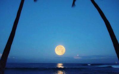 Maui Moon Messages